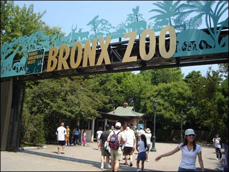 22FEB-Bronx-Zoo